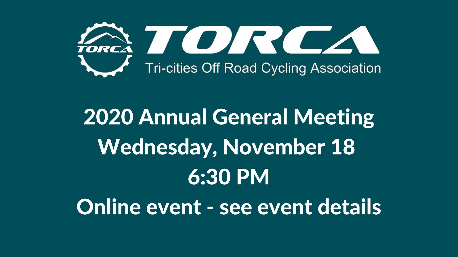 2020 Annual General Meeting (online)