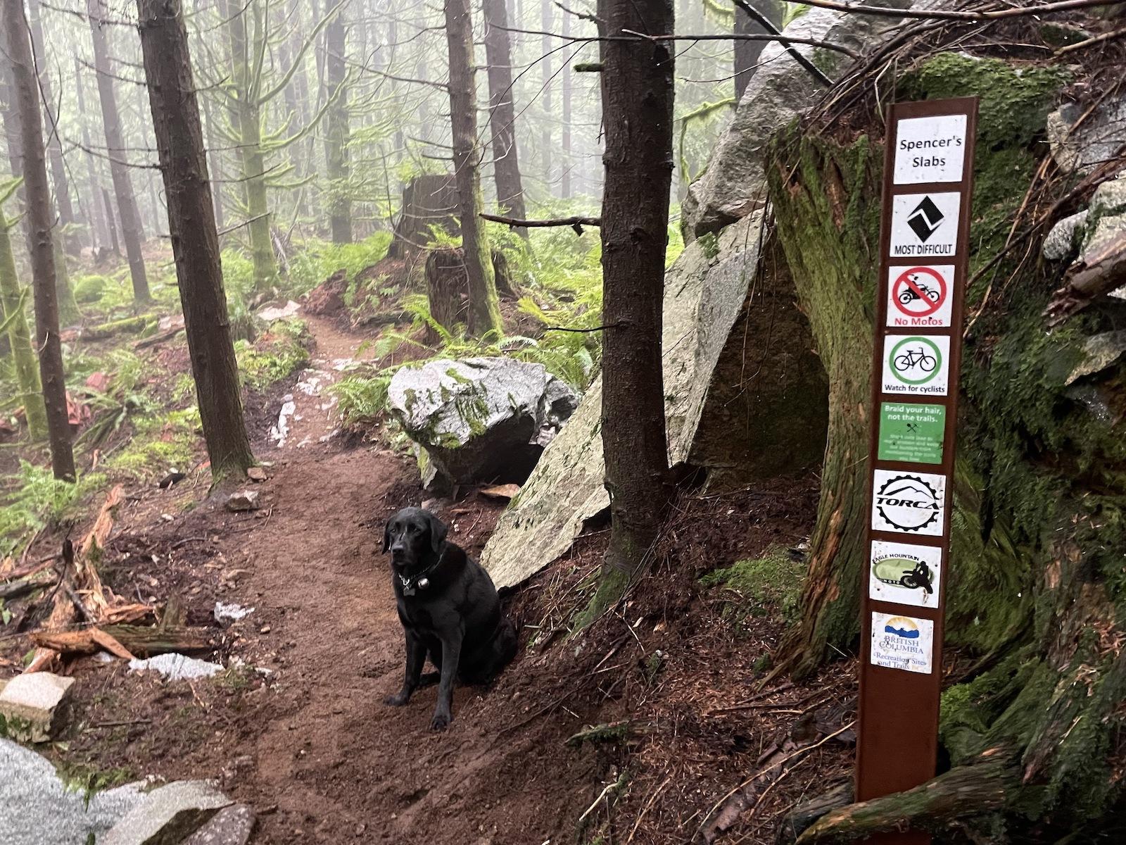 New Eagle Mountain Trails!